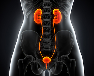 https://pedderhealth.com/wp-content/uploads/home-service-urology.jpg